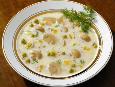Суп с шампиньонами и курицей. Рецепт куриного супа с грибами